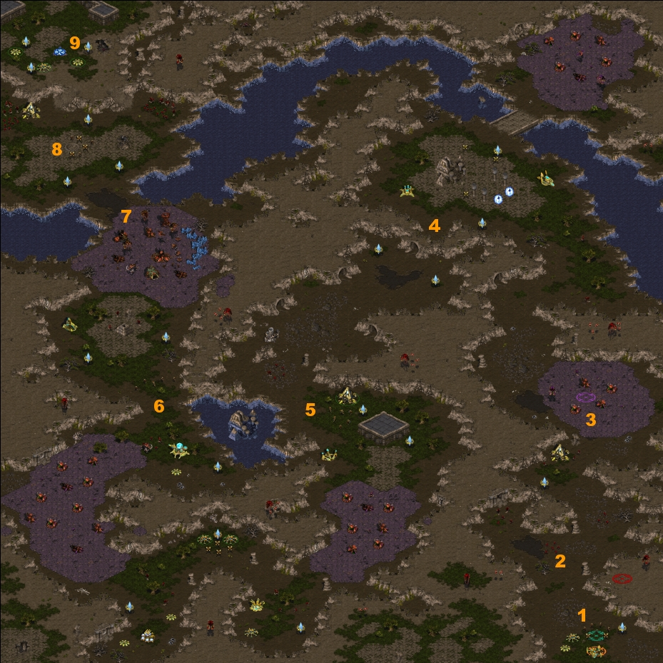 Protoss 1: Der Weg des Kriegers